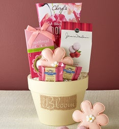 Mom's Best Bloomin' Flower Pot with Sweets