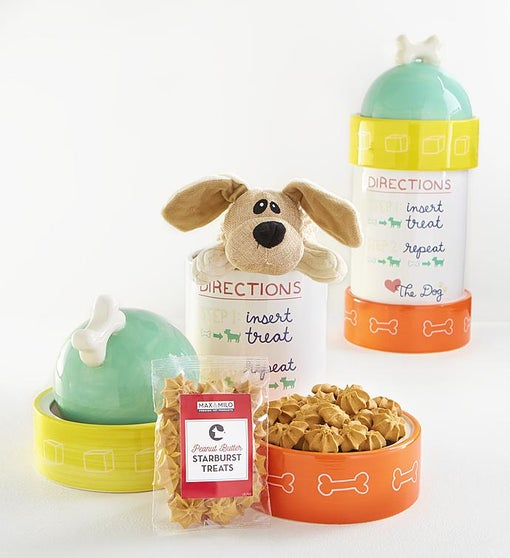 Max & Milo™ Fire Hydrant Dog Treats Gift Set