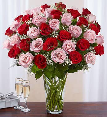 Ultimate Elegance Long Stem Pink  Red Roses
