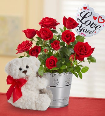 Love You Plant Gift Set