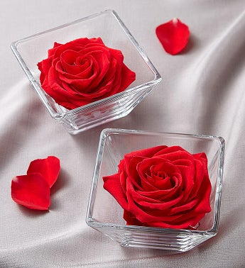 Preserved Infinite Rose Pair