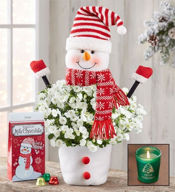 Frosty The Snow Plant  Free Candle