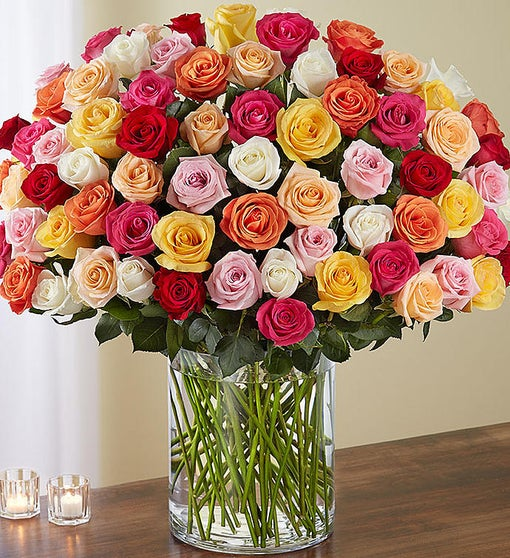 100 Premium Long Stem Multicolored Roses