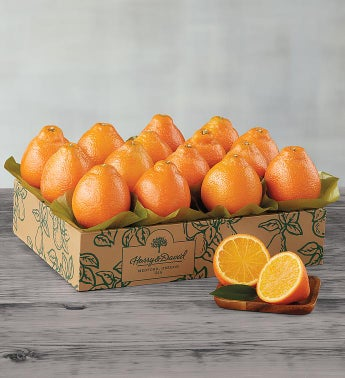 Western HoneyBells - One Tray