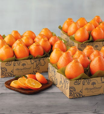 Western HoneyBells - Three Trays